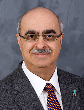 Darius Bagli, Research Director